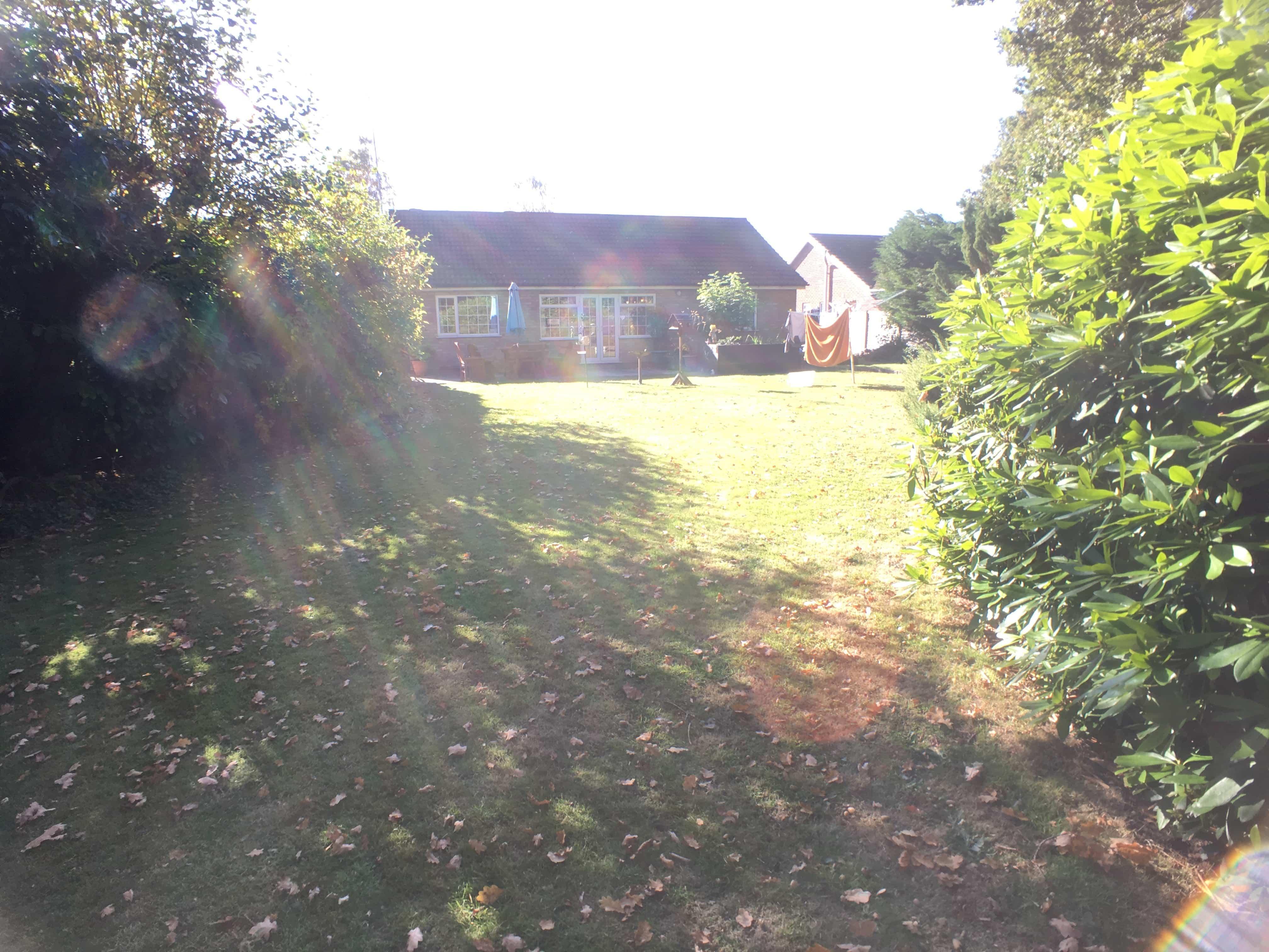 Outside, back garden